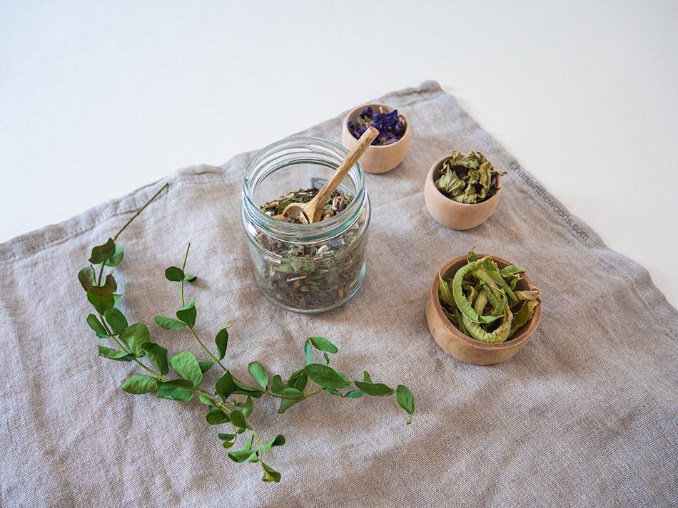 Comment créer sa trousse de premiers secours à base de plantes ?